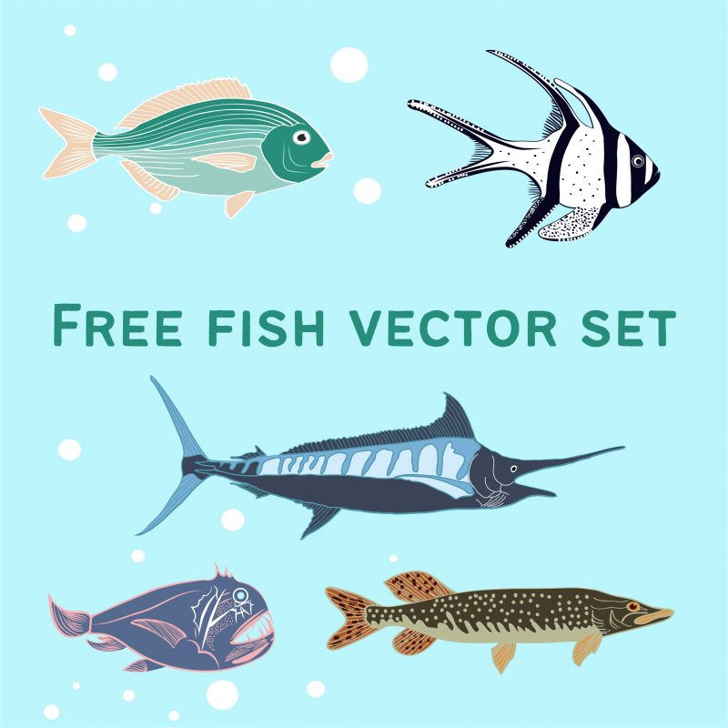 Free fish vector set