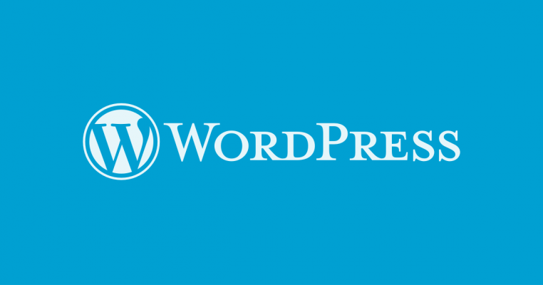 WordPress: The Internet's Largest CMS