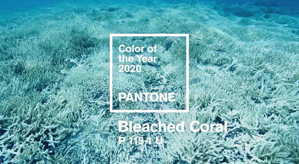 PANTONE COLOR FOR 2020 REVEALED