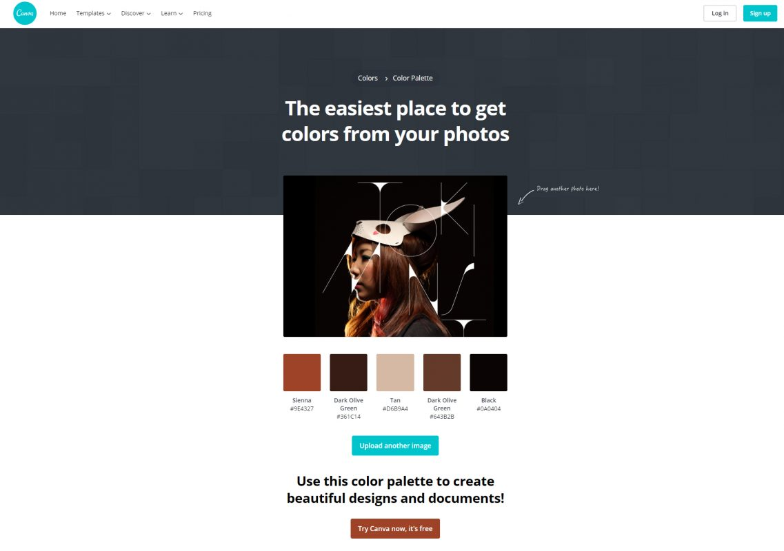 free Color palette generator Canva